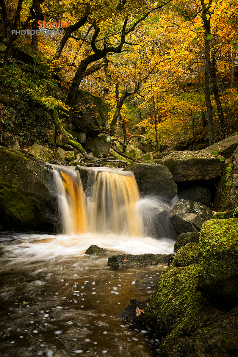 Showcase – Padley Gorge