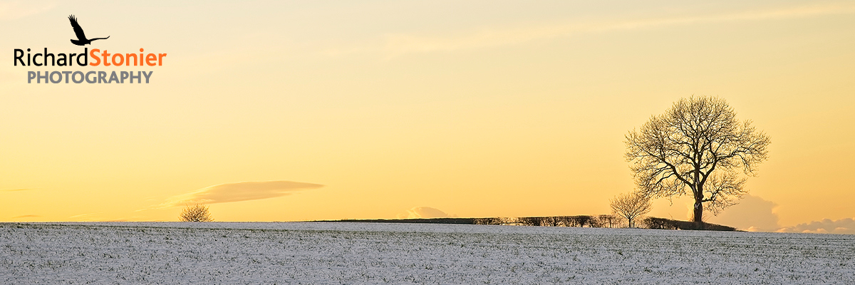 High Offley Panoramic
